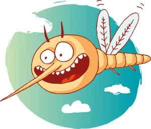 Warum jucken Mückenstiche