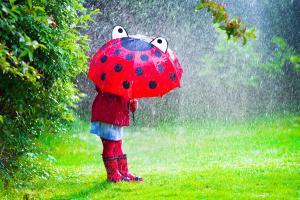 Wie entsteht eine Wettervorhersage?